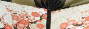 feuillets simples placés en enchaînement dans le dos plié en accordéon